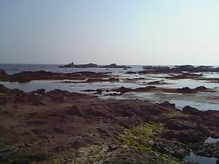 http://www.miyata-hifuka.sakura.ne.jp/blog/images/10023383073.jpg